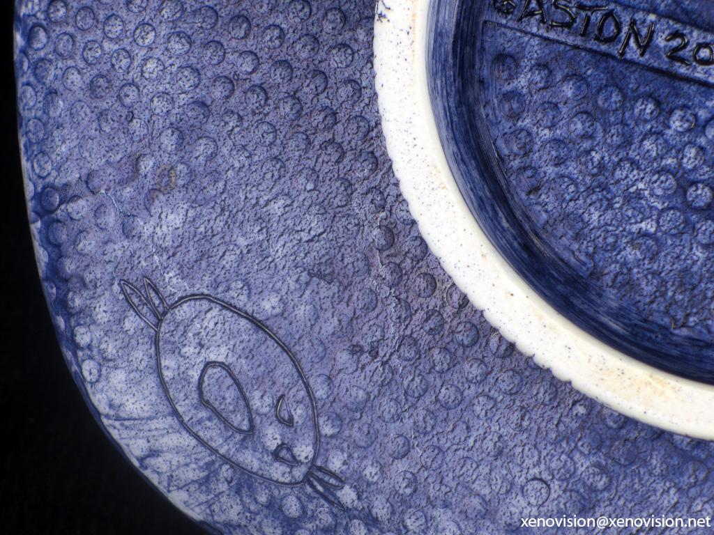 Indigo Blue © xenovision@xenovision.net