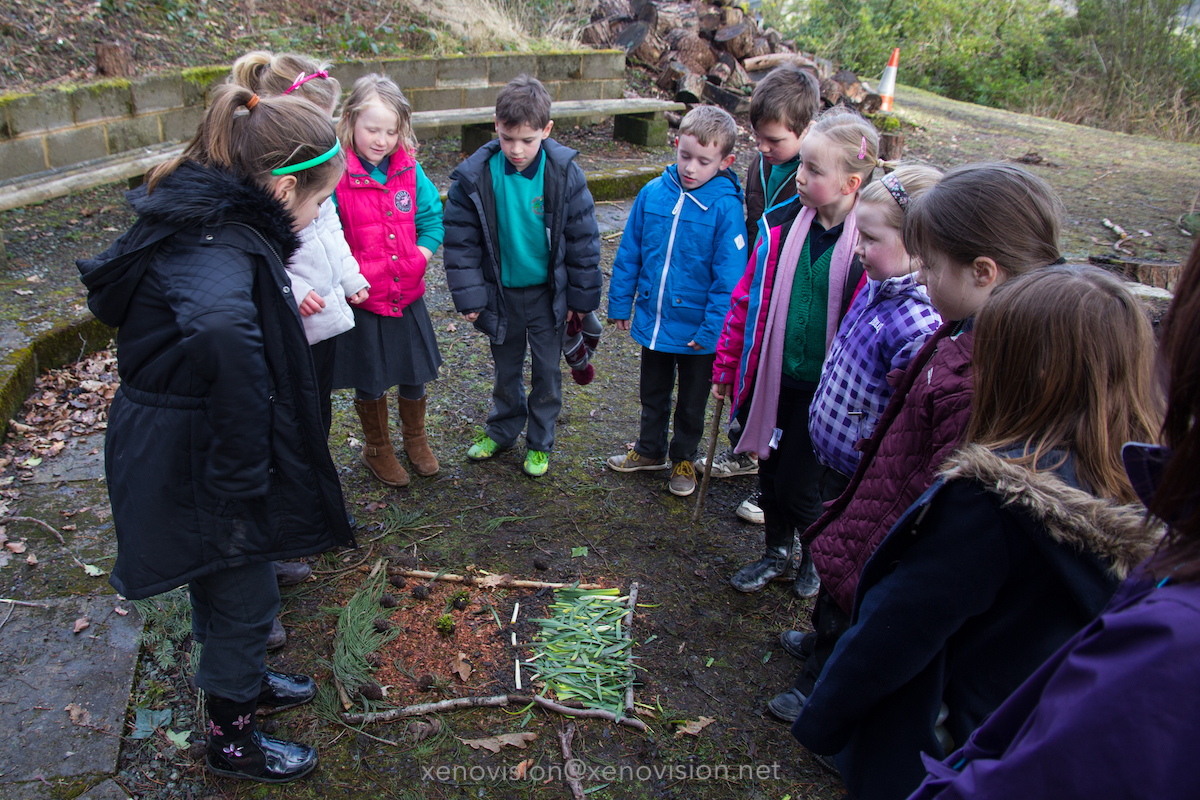 BRONEIRION - Forest School