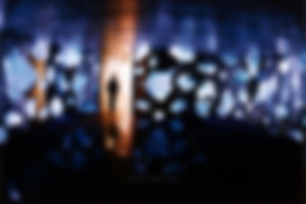 xenovision.net blur image